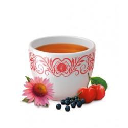 """Yogi tēja """"Imunitātes atbalsts"""" - BIO"""